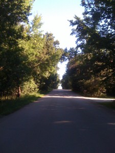 Shaded road in North Dakota