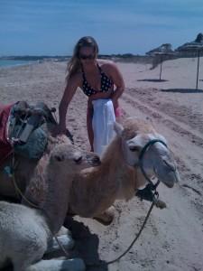 Ronda camel
