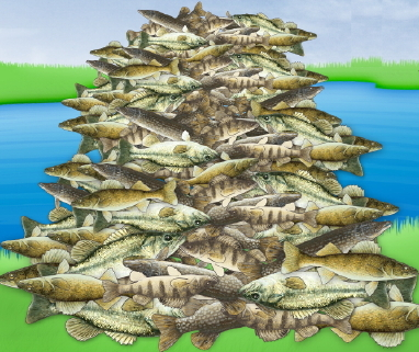 stack of fish